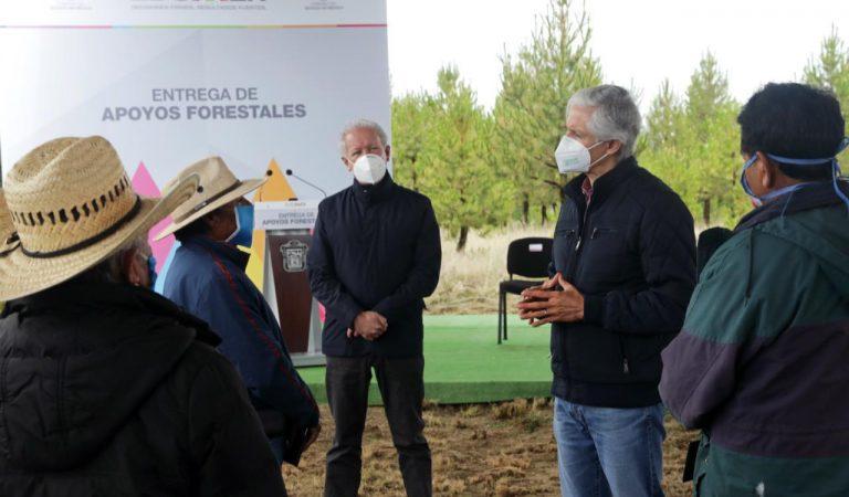 Entrega Del Mazo apoyos forestales de programas Reforestando Edoméx