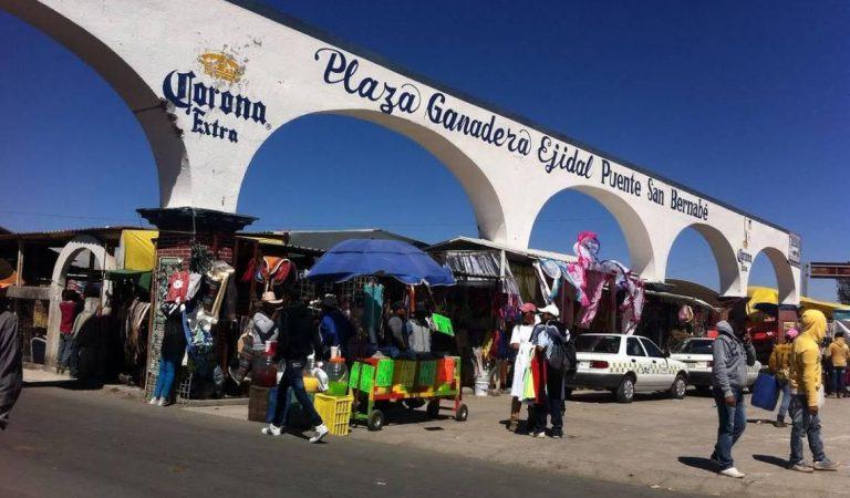Falso el Cierre de Plazas Ganaderas en Almoloya de Juárez
